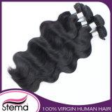 熱いSale 7A Grade VirginブラジルのHuman Hair