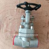 API602 forjó la válvula de puerta del NPT del extremo de cuerda de rosca del acero inoxidable F316L