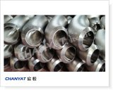 Bw-Fitting Stainless Steel Elbow (A403 304/304L, 316/316L, 317/317L, 321/321H)