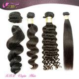 Gros année 8A usine poils non transformés Brazilian Hair