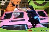 De populaire Binnen Ritmische Gymnastiek van het Park van de Trampoline van de Sprong van de Apparatuur van de Gymnastiek met Ce keurt voor Volwassene goed