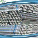 12 tubo de acero Pre-Galvanizado ERW inferior del cartón Pipe/Gi de la pulgada Sch80