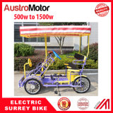 Bike 4 персон электрического Bike 2 персон Bike Surrey электрического электрический