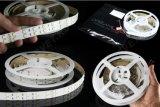 tira doble 600LEDs el 120LEDs/M alta calidad blanca blanca/caliente de 12V de la fila 5050 SMD LED de los 5m