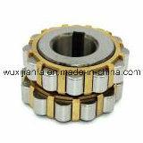 Exzenterreduzierstück-zylinderförmige Rollenlager