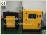 Ce/ISO/SGS/TUV 증명서를 가진 판매를 위한 15kVA 디젤 엔진 발전기