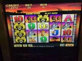 La mayoría de la máquina de juego de juego de Amusment de la ranura de los centenares del bingo popular del programa para la venta