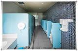 付属品が付いているFmhの幼稚園の赤ん坊HPLの洗面所のキュービクル部のパネル