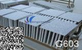 Естественная белая кристаллический серая плитка настила G603