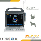 Échographie-Doppler portative de couleur de Bcu30V