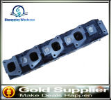 De auto Cilinderkop van Motoronderdelen Voor Nissan Td25 11039-02n05 11039-3s900 11039-44G01