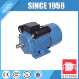 AC van de Inductie van de dubbel-Condensator van de Enige Fase van de Reeks van Yl Motor Laag T/min