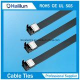 Ataduras de cables revestidas del bloqueo del ala del PVC Ss 304 de la mejor calidad