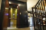 Вытравленный подъем дома лифта виллы нержавеющей стали волосяного покрова зеркала