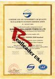 De Gezette Rij /Rear Delt van de geschiktheid Apparatuur voor Commercieel Gebruik