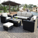 Form-im Freien Patio-Möbel-Flechtweiden-/Rattan-Aluminiumsofa-Set des Garten-M
