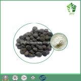 Органическая потеря веса выдержки семени 99% 5-Htp Griffonia Simplicifolia