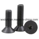 Schwarze Oxid-Grad Csk Kontaktbuchse-Schutzkappen-Maschinen-Schraube 10.9