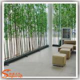 거의 자연적인 녹색 인공적인 운이 좋은 대나무 나무