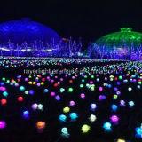 LED de luz del vástago para decoración de jardín