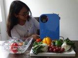 가정 사용 휴대용 싼 오존 물 살균제 기계