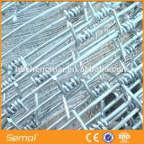 China-Lieferanten-Qualität galvanisiertes Stacheldraht-Fechten