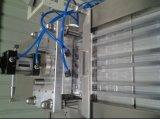 Dzp-250A automatische Zahnbürste-Papierkarten-Blasen-Verpackungsmaschine