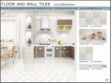 3D Vloer van Inkjet en de Ceramiektegel van de Muur (VWD36C607, 300X600mm)