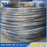 Fil recuit par noir à faible teneur en carbone de construction de fil obligatoire de fil d'acier doucement