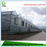 현대 태양 지적인 농업 온실