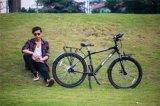 Tdjdc Alto-Precion bicis internas del recorrido de la velocidad de la bicicleta mecanismo impulsor eje 26*17 '' 7