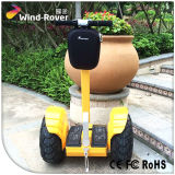 Wind Rover China Factory Mobility Scooter Scooter électrique à 2 roues