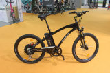 M660 사인 파동 최고 저잡음 세륨 En15194에 의하여 증명되는 전기 자전거 도시 Ebicycle 보장 2 년