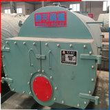 Industrielles Wns10.5-1.0MPa horizontales Gas und ölbefeuerter Warmwasserspeicher