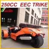 Três rodas 250cc Ztr para o adulto