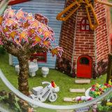 Het geassembleerde Meubilair van het Poppenhuis van het Plan van de Bal van het Glas van de Decoratie DIY van het Huis Miniatuur