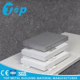Kundenspezifisches akustisches Decken-und Wand-Aluminiumpanel für Innenaußendekoration