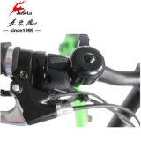 "E-Велосипед батареи Li-Льва алюминиевого сплава Snowfield 20 "" с CE (JSL039K)"