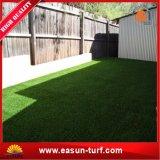حديقة يبستن عشب اصطناعيّة لأنّ عشب رخيصة [شنس] اصطناعيّة