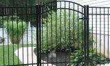 현대 간단한 자유로운 정비 주거 활 모양으로 한 정원 단 하나 날개 문