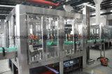 De automatische Plastic Machine van het Flessenvullen en het Verzegelen voor Sap
