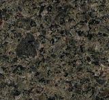 Bramme verdi delle mattonelle del marmo delle mattonelle del granito