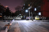 15W diodo emissor de luz Solar Streetlight Suited para Residential, Industrial, Commercial, Parking Lot (produto quente)