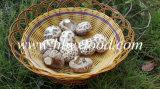 Грибы тавр, Shiitake белого цветка, высушенный овощ