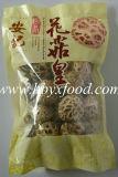 Unverschmutzter getrockneter Shiitake-Pilz