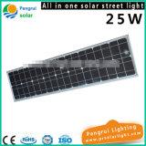 25W allen in Één Energie van de Sensor van de leiden- Motie - Licht van de besparings het Openlucht ZonneTuin