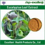 Estratto della polvere del foglio dell'eucalyptus della medicina dell'erba (10: 1)
