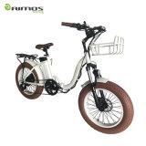 2017 bicicleta Foldable da bicicleta Electrical/250W E/bicicletas elétricas novas