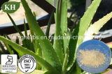 Polvere liofilizzata gel naturale della Vera dell'aloe di 100%