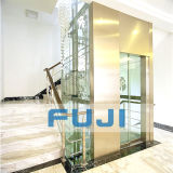 FUJI Used Home Elevators da vendere